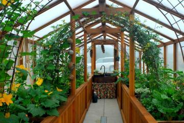 The exquisitely lush and verdant interior of a first-rate greenhouse.